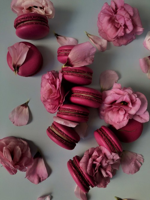 розовый макарун